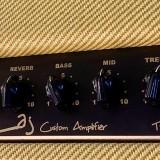 IMG 5778 160x160 - Amplificador Guitarra LAJ T-ONE REVERB