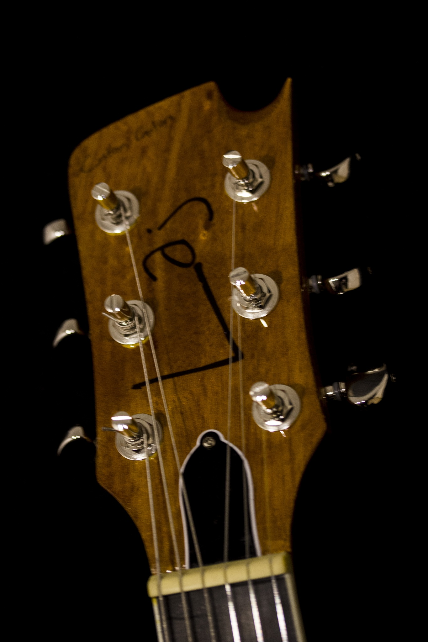 IMG 2038 - Laj Custom Guitars LATE 50