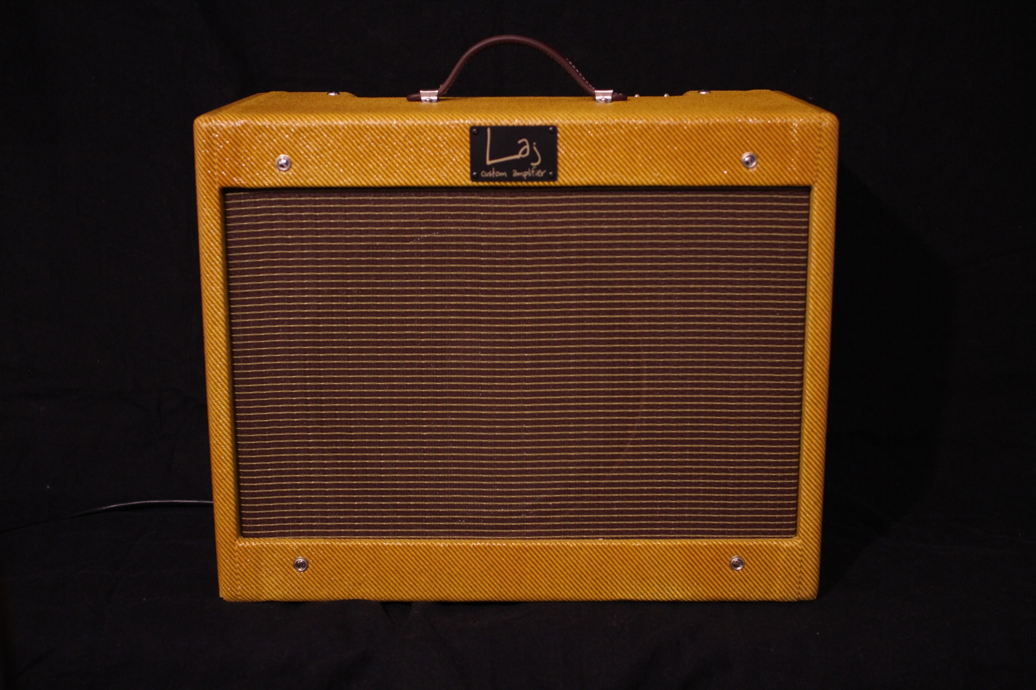IMG 2167 - Amplificador LAJ Speed Reverb